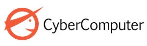 Cybercomputer